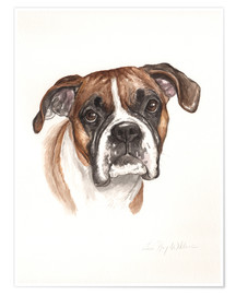 Poster Bulldog, brown-white