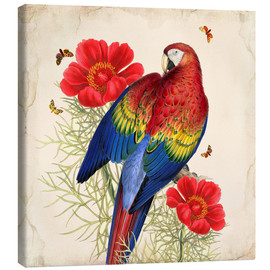 Tableau sur toile  Oh My Parrot III - Mandy Reinmuth