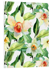 Forex  Daffodils in watercolor