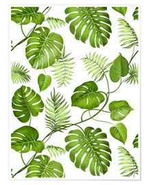 Poster  Monstera and palms