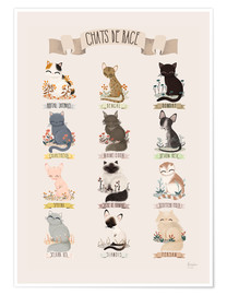 Poster  Les chats de race - Kanzilue