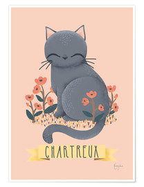 Poster Le chat chartreux