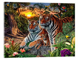 Verre acrylique  Hidden Tiger - Steve Read