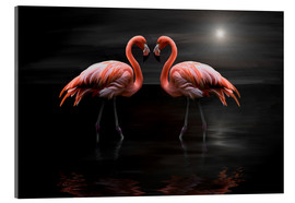 Verre acrylique  Flamingos at night - Heike Langenkamp