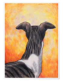 Poster Greyhound drawing
