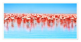 Poster  Flamants roses au lac Nakuru