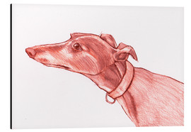 Tableau en aluminium  Greyhound pencil drawing white and red colour pencil sketch - Jim Griffiths
