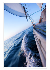 Poster  Sailing in summer