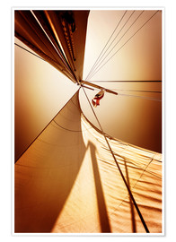 Poster  Sail in the wind I