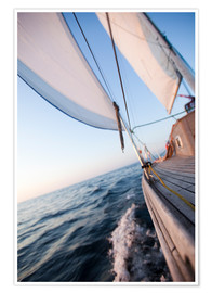 Poster  Sailing in Sunrise
