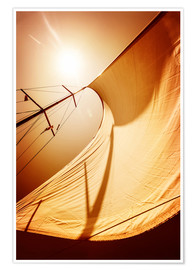Poster  Sail in the wind II
