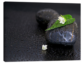 Toile  Black stones with leaf