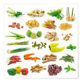 Poster  Vegetable and herb collection