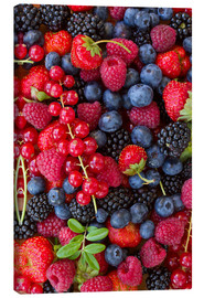 Toile  Fruits rouges