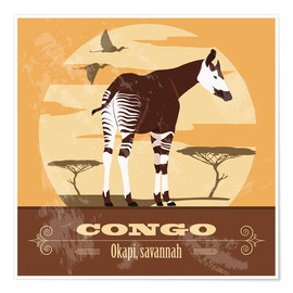 Poster  Congo, okapi - Kidz Collection