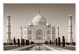Poster  Taj Mahal in sunrise light