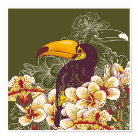 Poster  Toucan olive