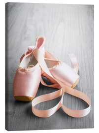Toile  pink ballet shoes
