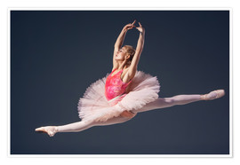 Poster  pink tutu and pointe shoes