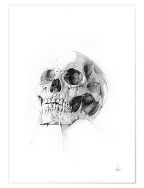 Poster  Skull - Alexis Marcou