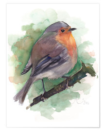 Poster  Red Robin, bird watercolor - Verbrugge Watercolor