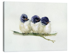 Toile  3 little swallows - Verbrugge Watercolor