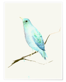 Poster Turquoise Blue Bird