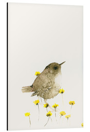Alu-Dibond  Wren and yellow flowers - Dearpumpernickel