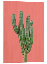 Bois  Cactus sur fond rose - Finlay and Noa