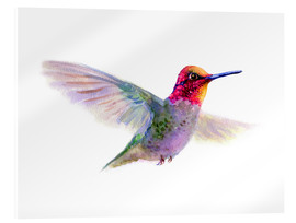 Verre acrylique  Hummingbird - Verbrugge Watercolor