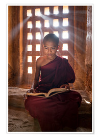 Poster  Young Burmese monk in meditation at the monastery - Jan Christopher Becke