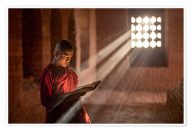 Poster  Buddhist monk in a monastery in Burma - Jan Christopher Becke