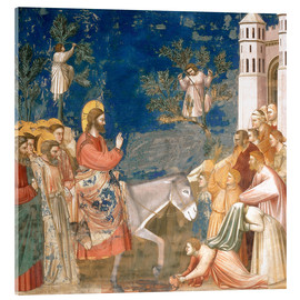 Tableau en verre acrylique  The Entry into Jerusalem - Giotto di Bondone