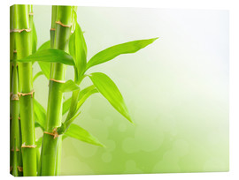 Tableau sur toile  green bamboo