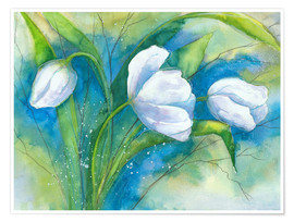 Poster Tulipes blanches