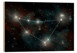 Bois  Artist's depiction of the constellation Capricorn the Sea Goat. - Marc Ward