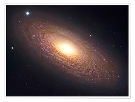 Poster  NGC 2841, spiral galaxy in Ursa Major. - Robert Gendler