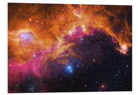 Tableau en PVC  the seagull nebula - Robert Gendler