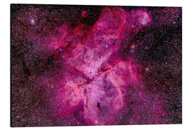 Alu-Dibond  The Carina Nebula in the southern sky - Alan Dyer