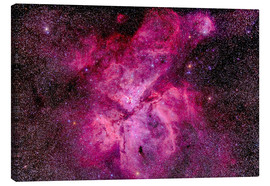 Tableau sur toile  The Carina Nebula in the southern sky - Alan Dyer