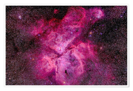 Poster The Carina Nebula in the southern sky