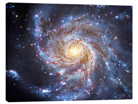 Tableau sur toile  Messier 101, The Pinwheel Galaxy in Ursa Major. - Robert Gendler