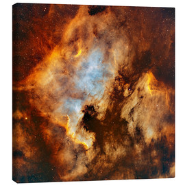 Tableau sur toile  The North America Nebula and Pelican Nebula in Cygnus. - Rolf Geissinger