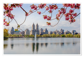 Poster  Buildings reflected in lake with cherry flowers in spring, Central Park, New York, USA - Matteo Colombo