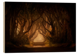 Tableau en bois  Sunny morning in Dark Hedges - Jaroslaw Blaminsky