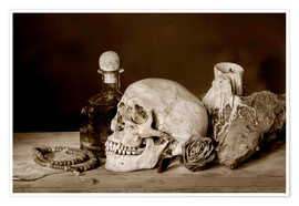 Poster  Still Life - skull, ancient book, dry rose and candle