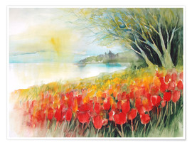 Poster  Tulips blossoms in Ueberlingen on Lake Constance - Eckard Funck