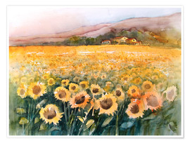 Poster  Sunflower field in the Luberon, Provence - Eckard Funck
