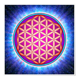 Poster Flower Of Life - Primal Energy