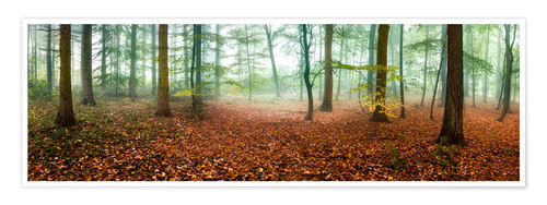 Poster Autumn forest panorama with red autumn leaves